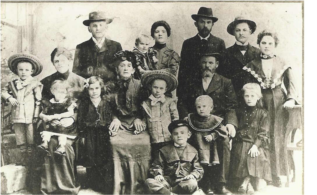 Braun Family Braun Felsen Families